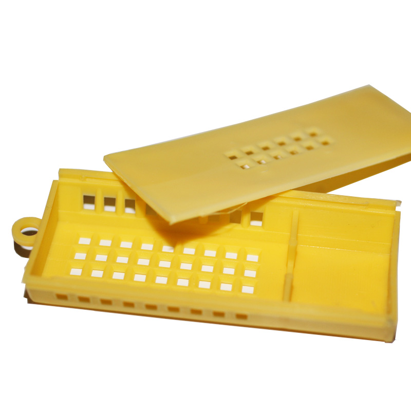 Queen Introduction Shipping Cage - yellow